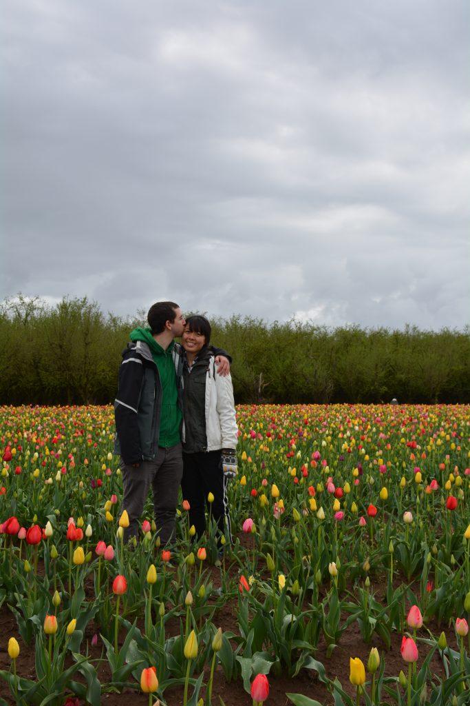 Wooden Tulip Shoe Festival